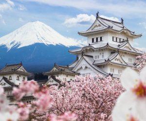 เพราะเหตุอะไรประเทศญี่ปุ่นถึงเลือกรบ?